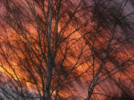 Mother Natures Art (c) JLPhillips 2013 A Canadian sunset