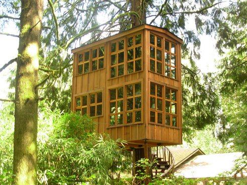www.treehugger.com