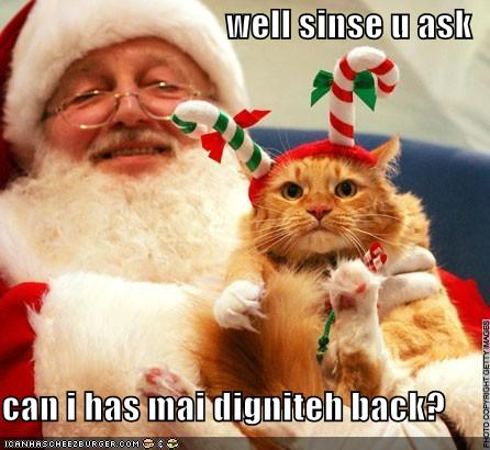funny_pictures_cat_with_santa