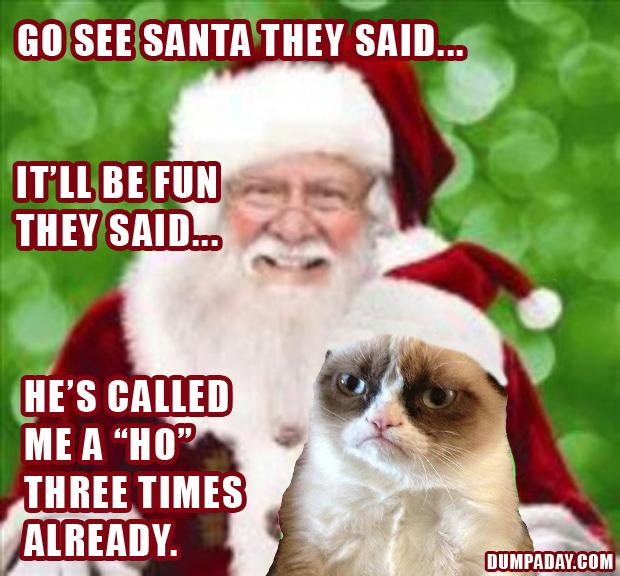 Grumpy Cat Holiday Pictures