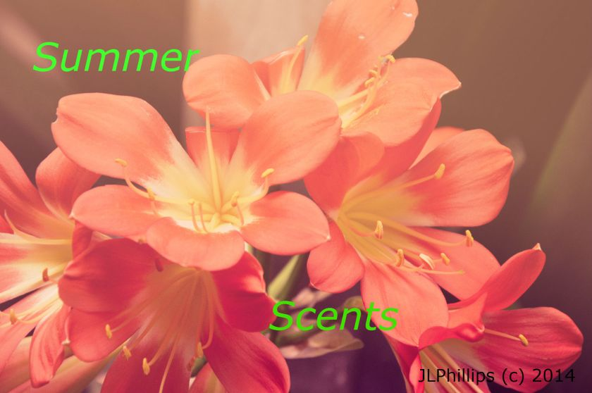 summerflowers