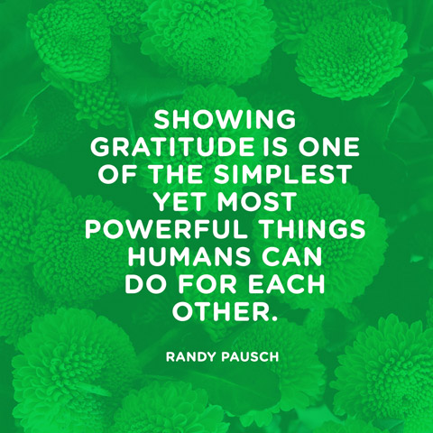 quotes-gratitude-simplest-randy-pausch-480x480