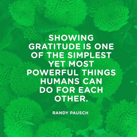 quotes-gratitude-simplest-randy-pausch-480x480