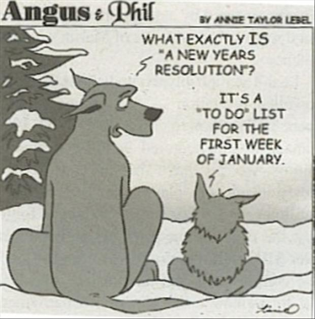 funny-new-years-pictures
