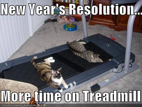 new year resolution more time on treadmill funny cat