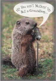 funny-groundhog