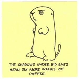 groundhog-shadow