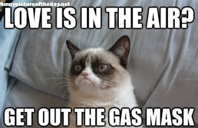 love is in the air grumpy cat funny