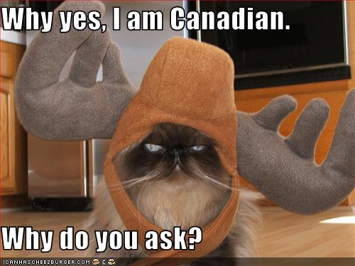 Image result for canada day funny