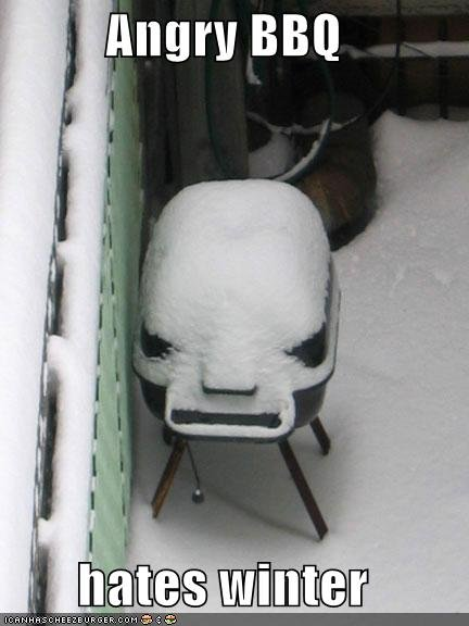 funny-pictures-auto-barbecue-winter-384907