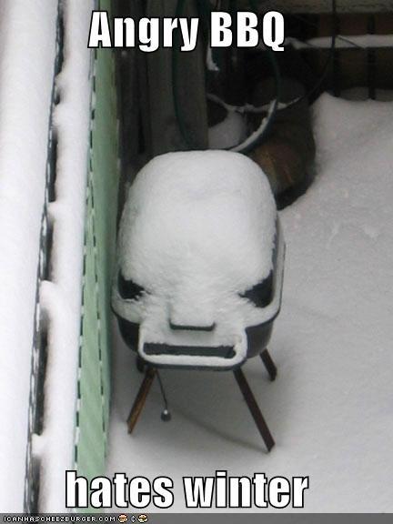 funny-pictures-auto-barbecue-winter-384907